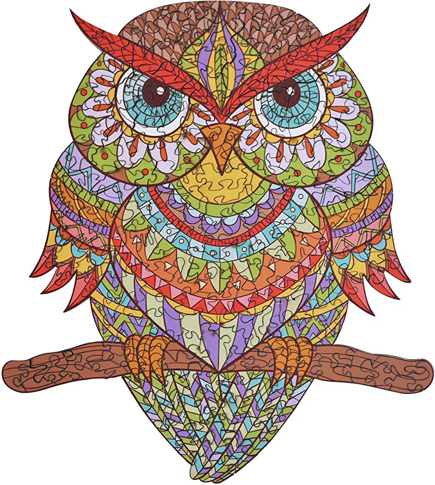 Colorful Owl Jigsaw Puzzle
